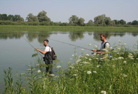 На рыбалку за позитивом!