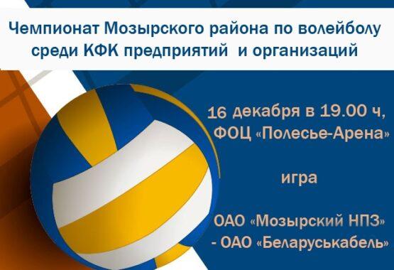 Чемпионат Мозырского района по волейболу